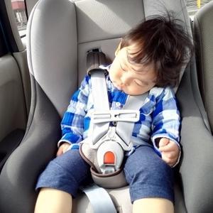 子供 車酔い