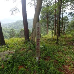 津久井堂所山 マイナーでもしっかりと整備された良い山