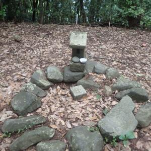 浄福寺城跡(千手山)歴史と自然を感じるワイルドな尾根