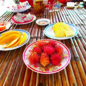2018年6月に行ったベトナムホーチミンシティ旅行『ミトーメコン川クルーズ』を思い出す。行っておいて良かった。前編