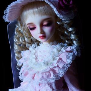 眠り姫の見る「夢」