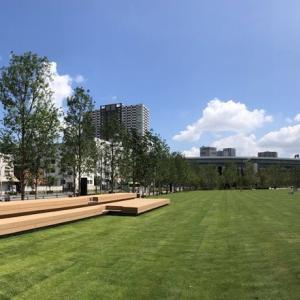 8月1日有明ガーデンパークオープン!子供が遊べる屋外緑地広場!