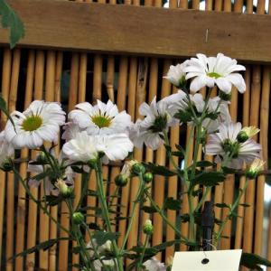 湯島天神菊祭り ・・・ ほうき作り、盆庭作り、競技用切り花。