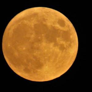 今夜は8月の満月、スタージャンムーン。