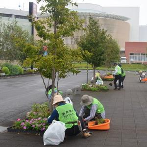 雨中、研究学園駅周辺の花壇のお手入れを実施しました!