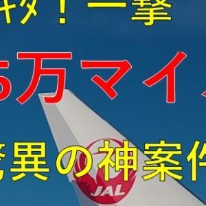 【緊急速報】一撃15万JALマイルを獲得!驚異の神案件が君臨。