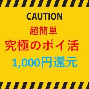 【超簡単】ブログ村1位が教える!伝説のポイ活の最高還元で1,000円をもらいましょう。。