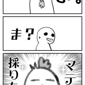 千葉県・久津間でマテ貝採り!