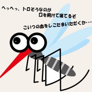 うるさいものはいろいろあれど(2)―蚊の教え―