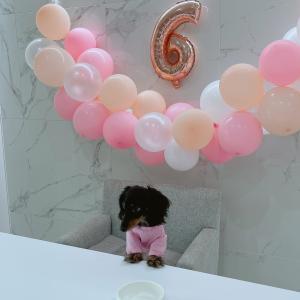 キッチンリフォーム後のビジュ6歳のお誕生日はバルーンでお祝い