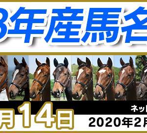 コスモライセンスの18応募馬名と馬名選挙投票馬名