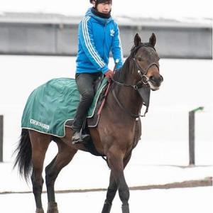 ロイバルト馬名決定と調教の動きはいいものの