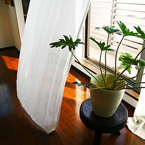 洗い立てのカーテンと、心地よい暮らし。