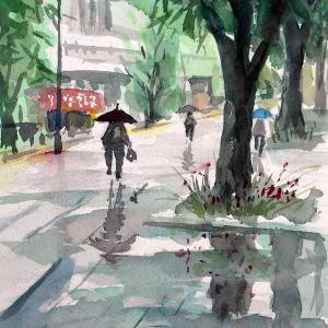 雨の横浜大通り公園