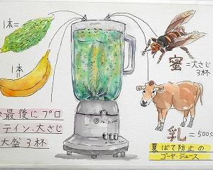 夏バテ防止のゴーヤ、ジュースの絵
