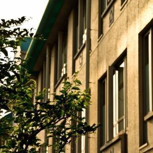 【滋賀県】小学生女子児童らが教室などで盗撮被害。スマホには複数の画像が保存。死亡した教師を書類送検