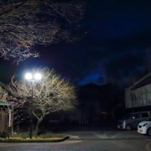 【宮崎県】公園の駐車場で背後から襲う。10代女性が強制わいせつ未遂被害。介護士(26)逮捕