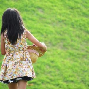 【岐阜県】小学生女子児童(9)のお尻を盗撮。大垣市の公園で被害。小学校教師(59)逮捕