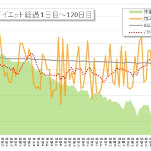 【ダイエット記録】121~130日目 2017年の総括→およそ4ヶ月でマイナス16キロ!