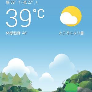 暑い(;´д`)