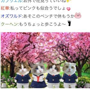 """""""みんにゃで桜を見る会☆全員集合③"""""""