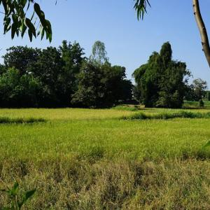 Prasat Ta Dam(Prasat Nong Tasi) / Buriram
