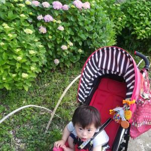 1歳6ヶ月健診