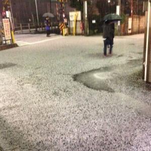 【気象】東京、次期外れの雨、雪、雹(ひょう)に見舞われる!