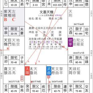 欽天四化紫微斗数 事例研究