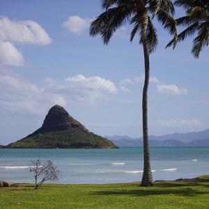 千葉ロッテも西武・ソフバン・巨人みたいにハワイ旅行できるように頑張れ(苦笑)