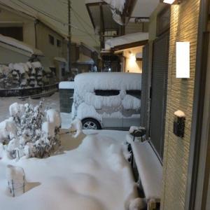 【千葉ロッテ】今日から3日間自宅待機に。しかも明日は雪予報だし(;゚Д゚)