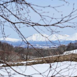 丘の町 美瑛町 丘の景観ならこの町