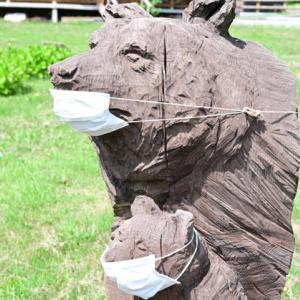熊さんもマスク( ´艸`) 三密無縁の好スポットで花に癒され