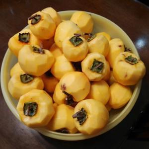 初めての干し柿作り。作り方を地元の達人に教えてもらう。