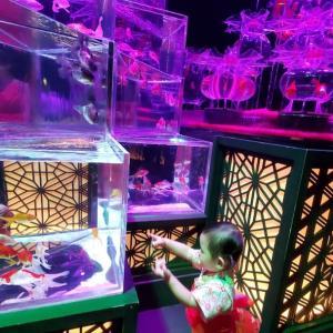 【アートアクアリウム】金魚に大興奮の娘