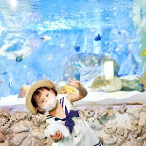 熊本の海中水族館 シードーナツ