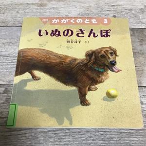 絵本20【いぬのさんぽ】【アルどこにいるの】