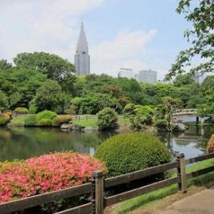 新宿御苑のあとは、新宿で苔玉作り♪なんてどう?