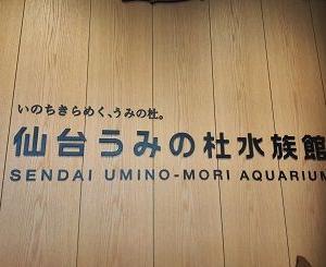 雨でも楽しめる仙台うみの杜水族館