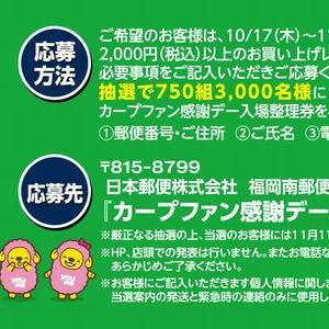【2019/11/05締切】: 広島東洋カープ カープファン感謝デー入場整理券(4枚)プレゼント
