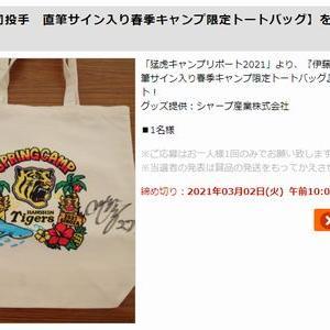 【2021/03/02締切】:阪神 伊藤将司投手 直筆サイン入り春季キャンプ限定トートバッグが当たる!