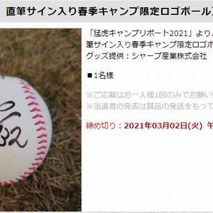【2021/03/02締切】:阪神 井上広大選手 直筆サイン入り春季キャンプ限定ロゴボールが当たる!