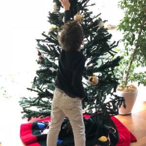 今年10年目の、2mのクリスマスツリー