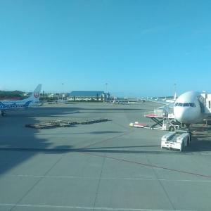 緊急事態宣言解除後における5月末の沖縄空港をレポートしよう