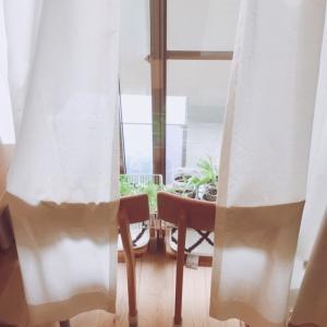 【DIY】格子窓をつくりたい!