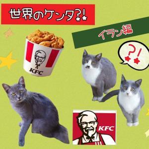 【世界のケンタ!?】を食べてみよう!【イラン編】