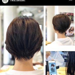 髪の毛の医者