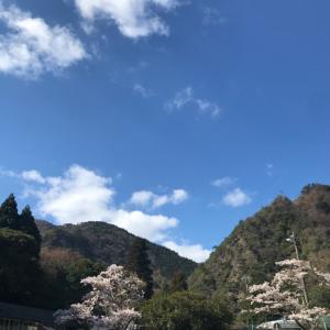 今日は 六甲山の楽々コース (^_^)a