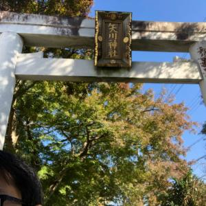 矢川神社さん