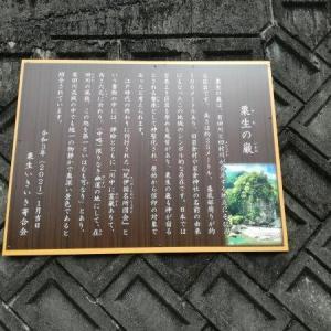 有田巨峰村でぶどう狩り&あらぎ島